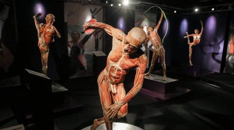 Mostra Real Bodies