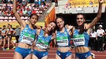 da sinistra Pitzalis, Coiro, Gherardi e Vandi
