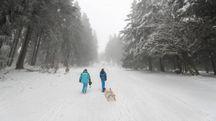Previsioni meteo, nuova neve in arrivo. E il gelo russo punta l'Europa (foto Ansa)