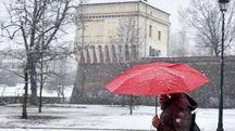 Neve a Torino (Ansa)