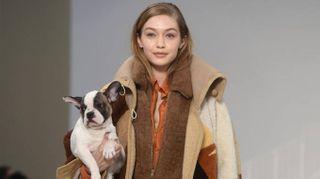 Tod's, Gigi Hadid sfila con un cucciolo. Tenerezza chic in passerella