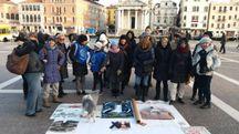 Flash mob a Venezia per i cani di Sciacca