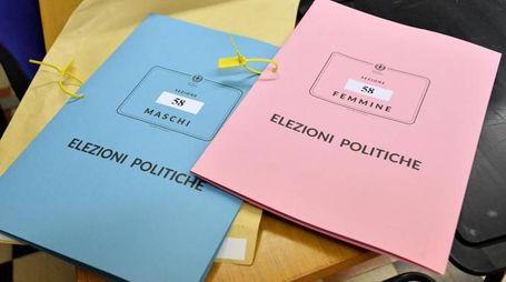 Elezioni politiche del 4 marzo 2018 (Ansa)