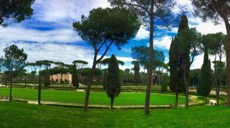 Piazza di Siena sarà verde tutto l'anno