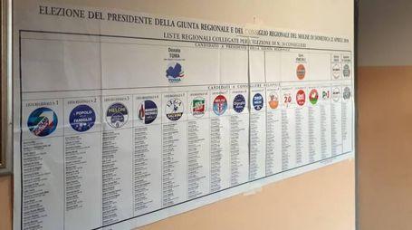 Elezioni regionali, urne aperte in Molise (Ansa)