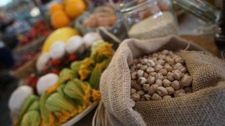 Dieta mediterranea (Ansa)