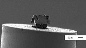 La casa più piccola del mondo (Foto: Femto-ST Institute)