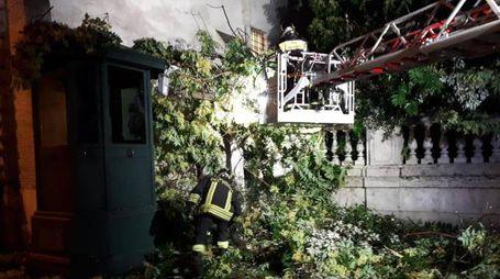 Maltempo, danni al Quirinale (Ansa)