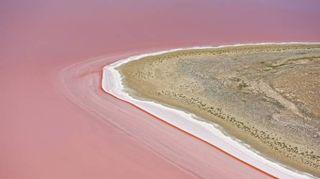 Un lago rosa è comparso nel deserto dell'Australia
