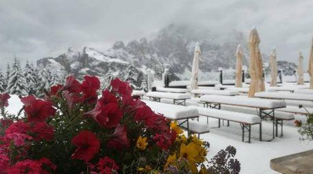 Previsioni meteo, ipotesi neve anche nel prossimo weekend. Nella foto: Val Zoldana (Ansa)