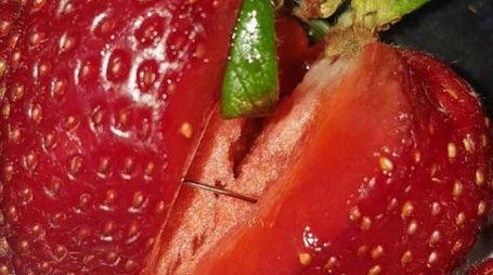 Una delle fragole con un ago nascosto all'interno (Twitter)