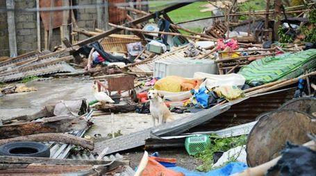 Mangkhut colpisce le Filippine (Lapresse)