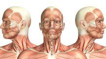 Un volto umano in 3D (foto iStock)