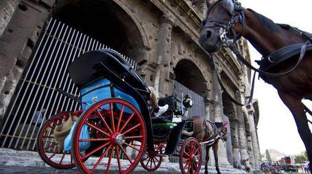 Stop alle botticelle sulle strade di Roma (Ansa)