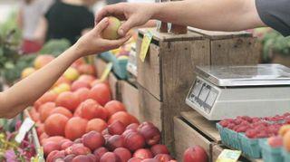 Trentino, 3 sagre da non perdere ad ottobre tra mele, funghi e castagne