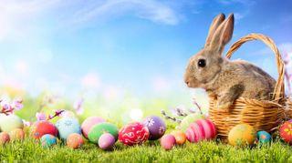 Auguri di buona Pasqua 2019, le immagini più belle