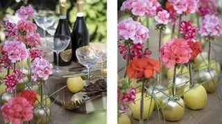 Decora la tavola dell'estate con i gerani colorati