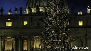 A Roma inaugurati albero e presepe in piazza San Pietro